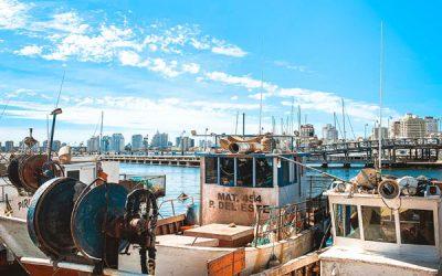 Aktivitäten in Punta del Este – der Hafen